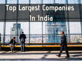 Top 10 companies in India by Revenue